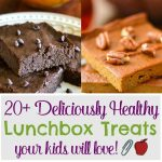 20+ Deliciously Healthy Lunchbox Treats Your Kids Will Love