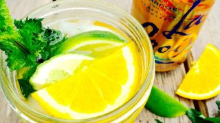 21 Day Fix Orange LaCroix Mojito