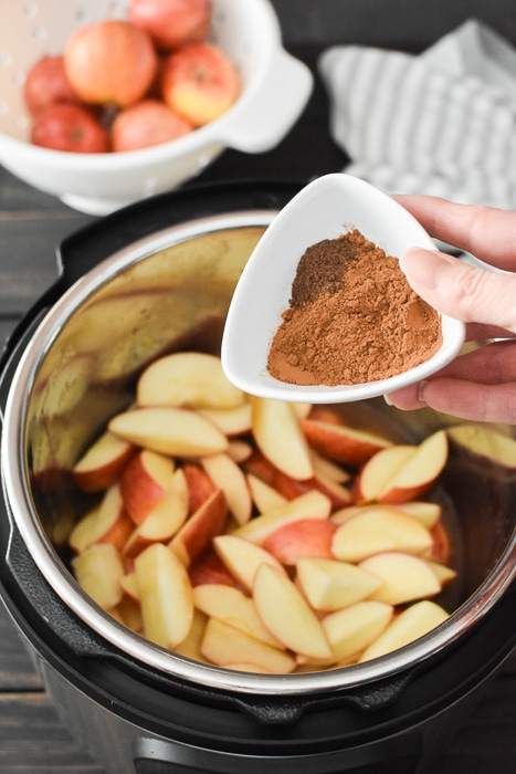 Apple slices in an Instant Pot with spices