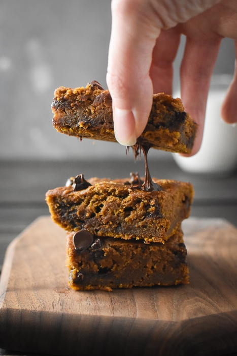 Melty chocolate chip pumpkin blondies